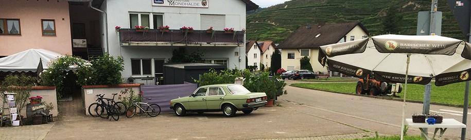 mercedes-w123-vogesburg
